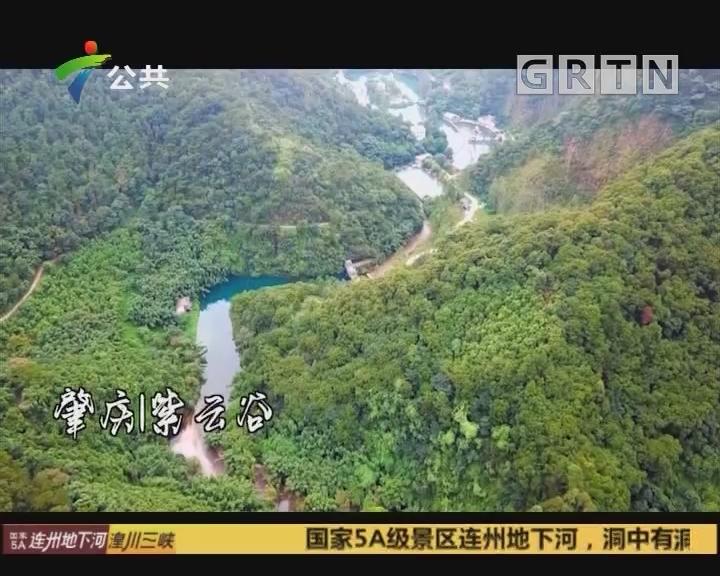 (DV现场)心水之旅:肇庆 紫云谷