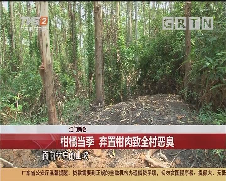 江门新会:柑橘当季 弃置柑肉致全村恶臭