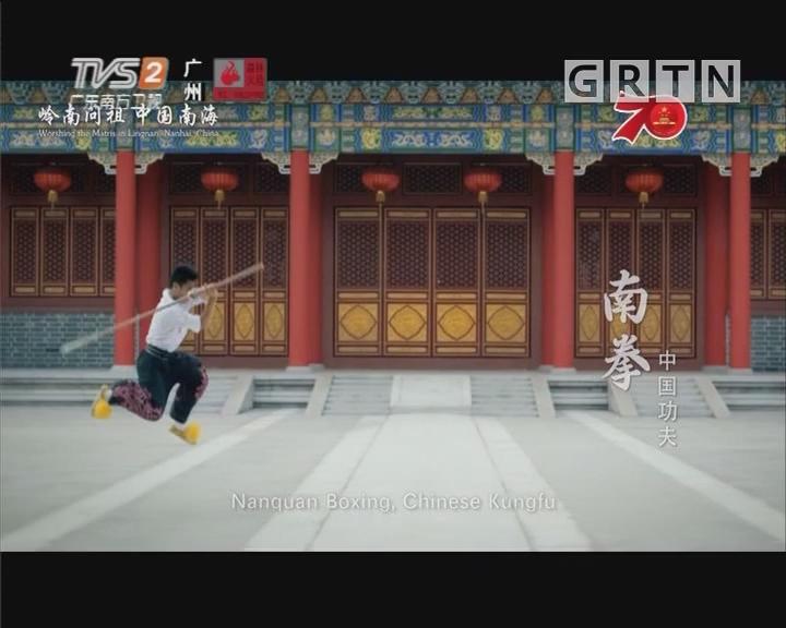 中国功夫:南拳