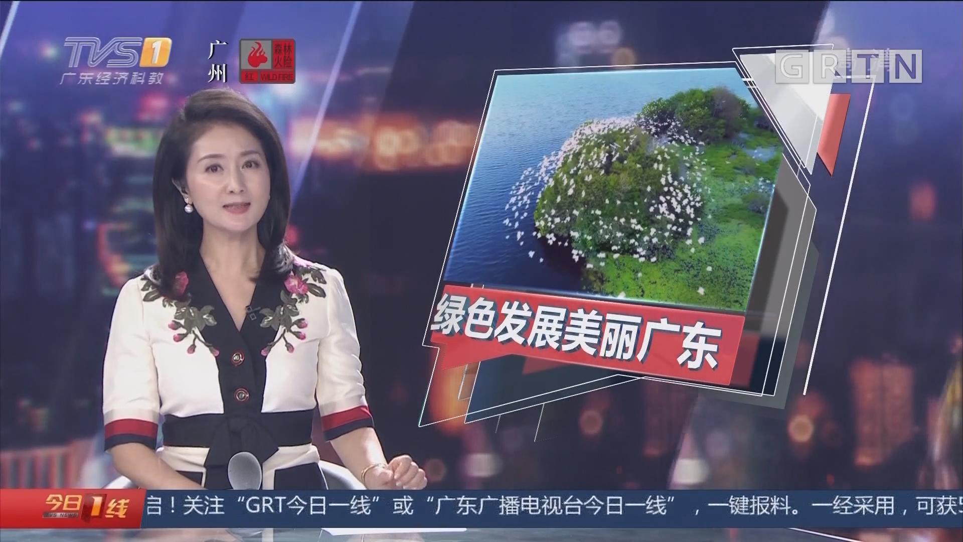 绿色发展美丽广东