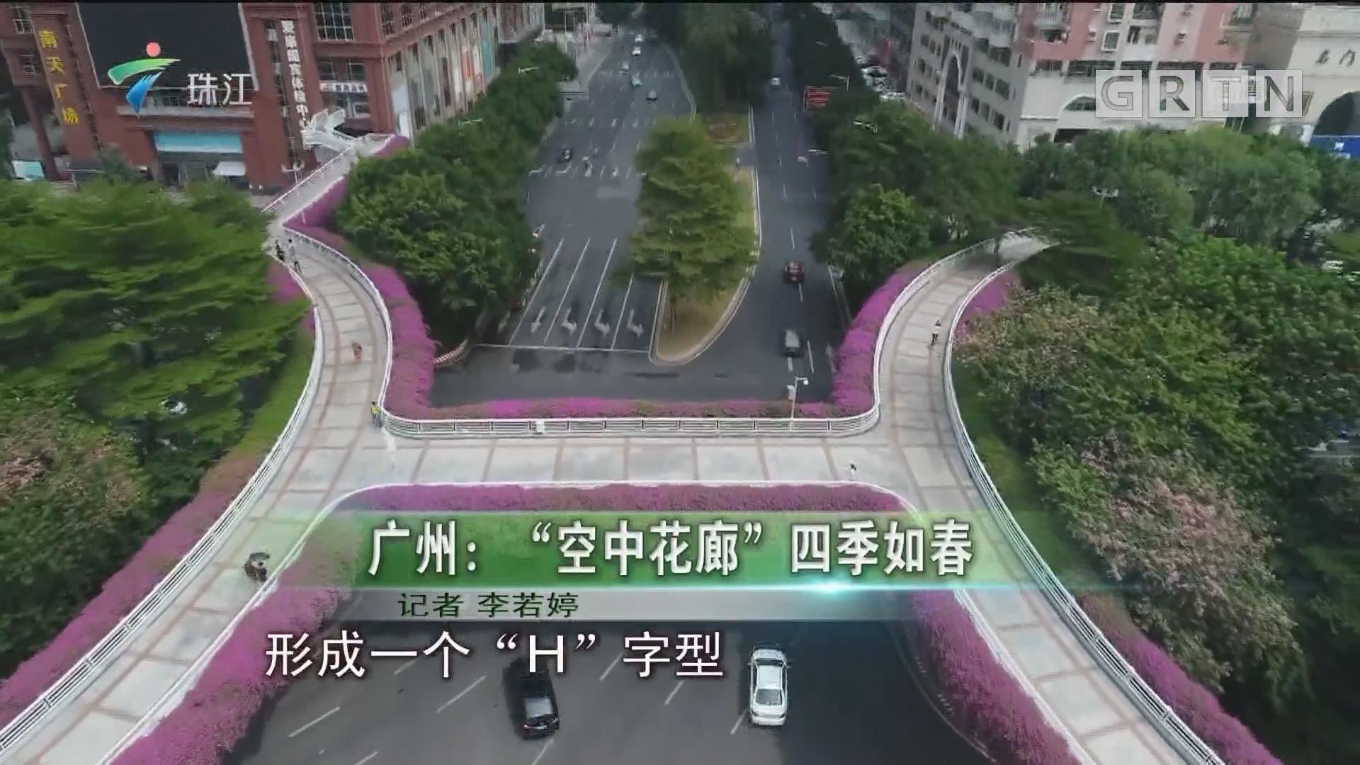 """广州:""""空中花廊""""四季如春"""