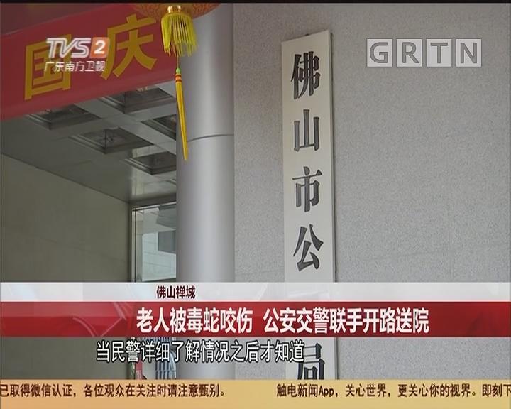 佛山禪城:老人被毒蛇咬傷 公安交警聯手開路送院