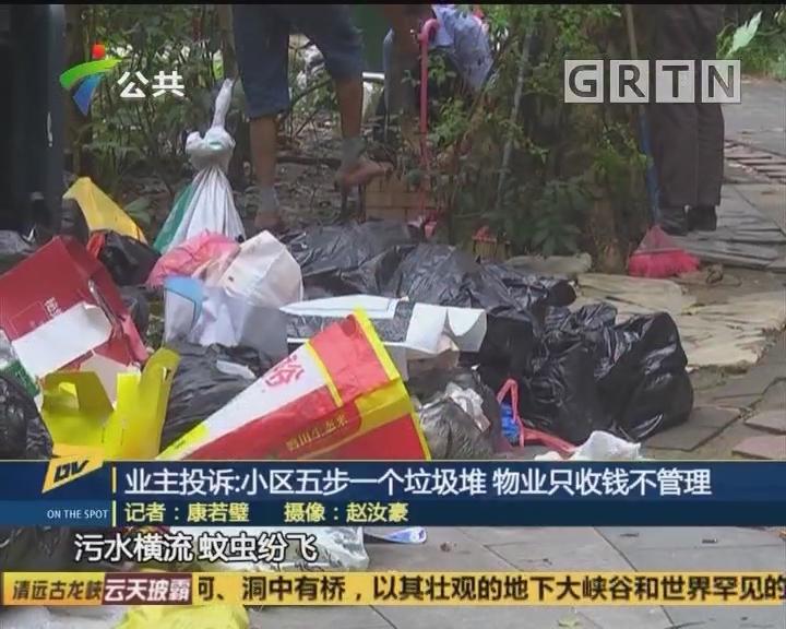 (DV现场)业主投诉:小区五步一个垃圾堆 物业只收钱不管理