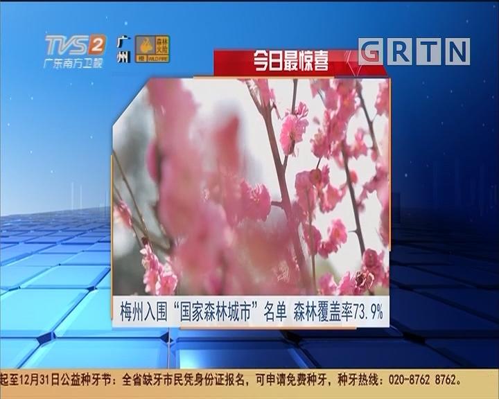 """今日最惊喜:梅州入围""""国家森林城市""""名单 森林覆盖率73.9%"""