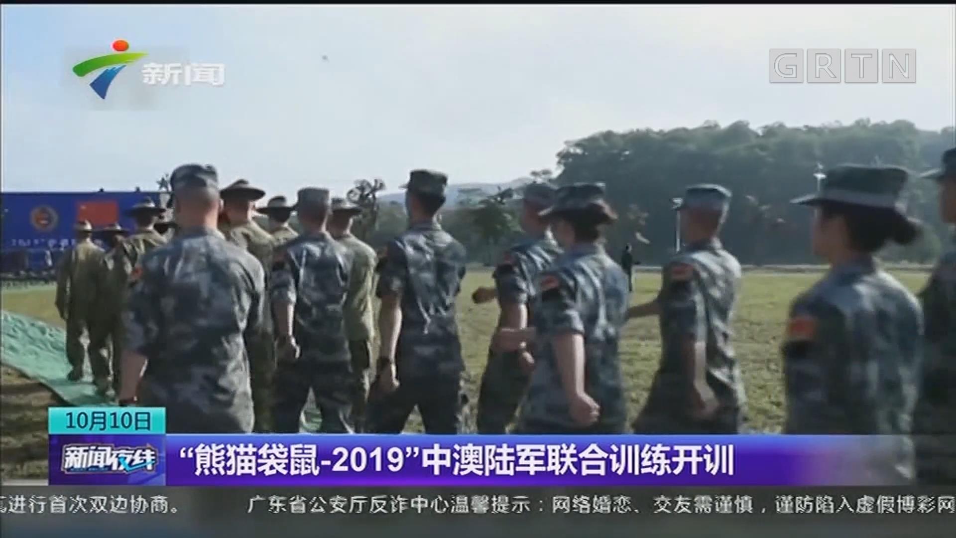 """""""熊猫袋鼠-2019""""中澳陆军联合训练开训"""