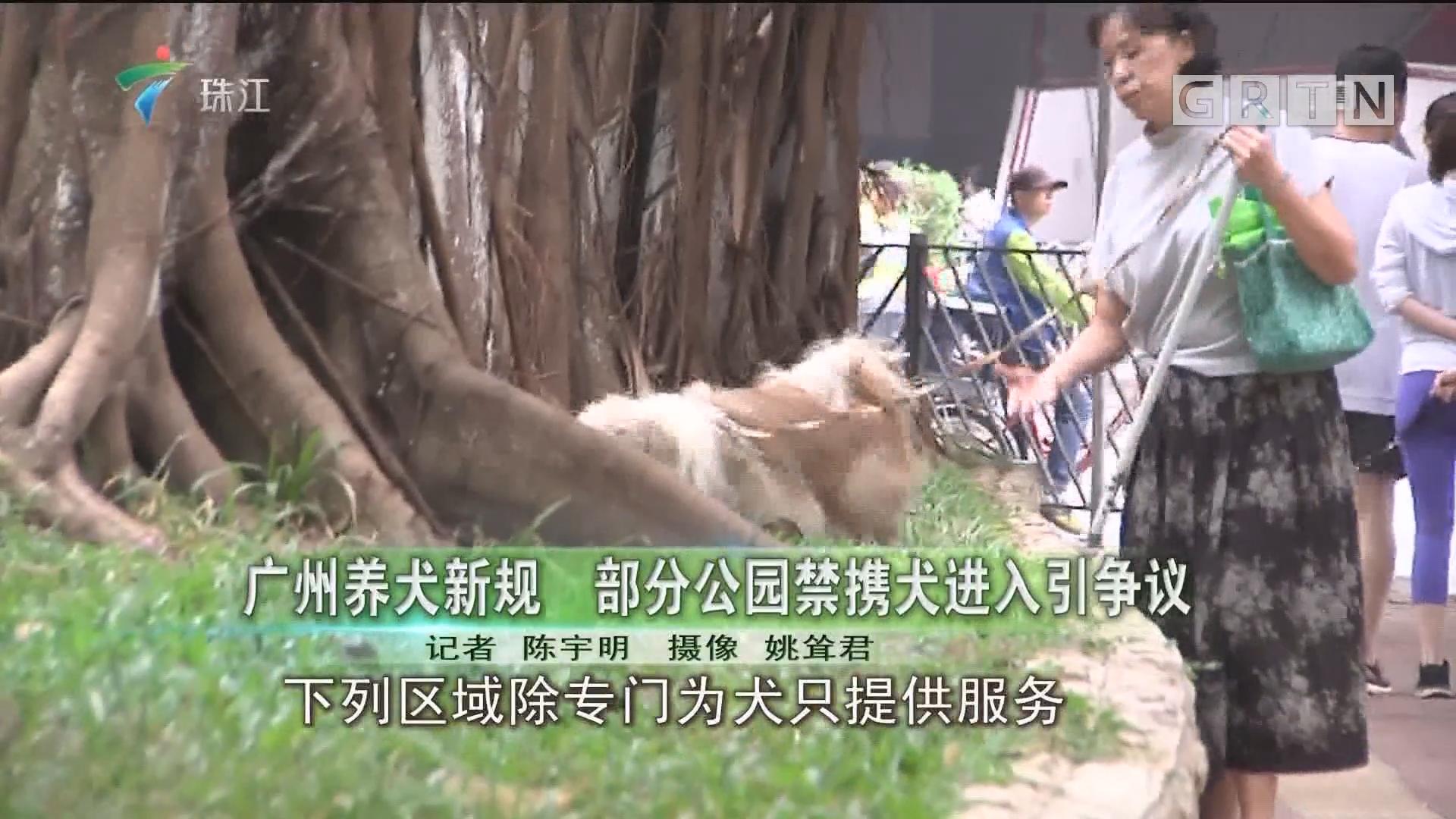 广州养犬新规 部分公园禁携犬进入引争议