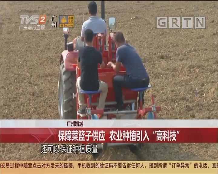 """广州增城:保障菜篮子供应 农业种植引入""""高科技"""""""