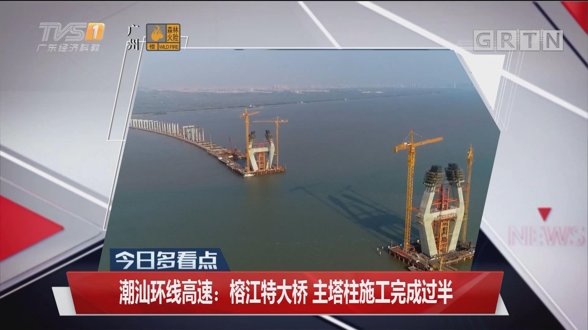 潮汕环线高速:榕江特大桥 主塔柱施工完成过半