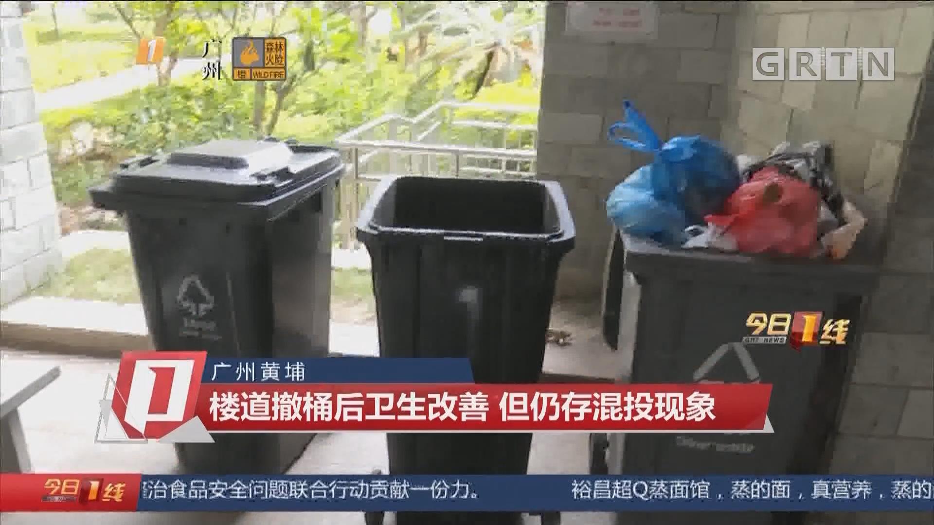 广州黄埔:楼道撤桶后卫生改善 但仍存混投现象