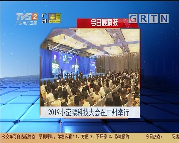 今日最科技:2019小蠻腰科技大會在廣州舉行
