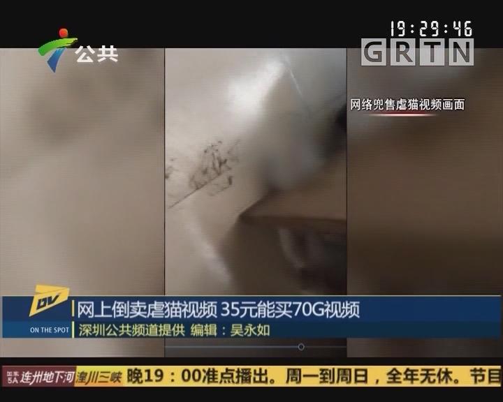 (DV现场)网上倒卖虐猫视频 35元能买70G视频