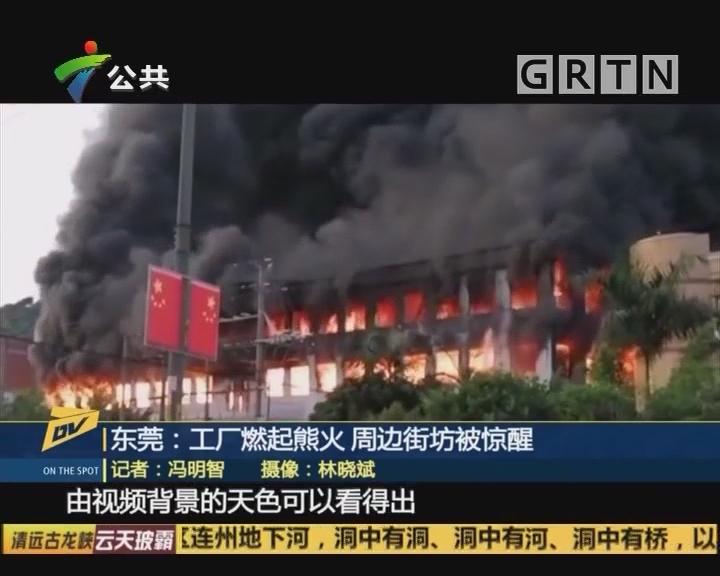 (DV现场)东莞:工厂燃起熊火 周边街坊被惊醒