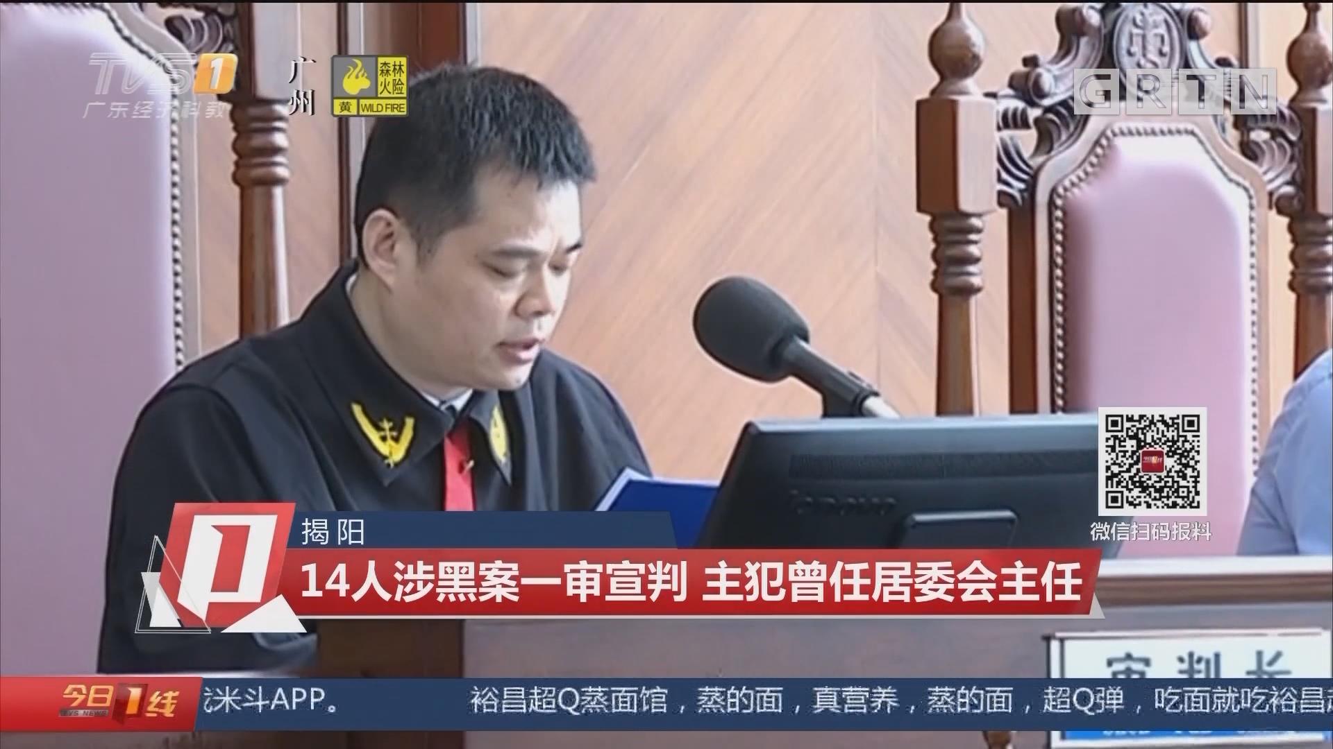 揭阳:14人涉黑案一审宣判 主犯曾任居委会主任