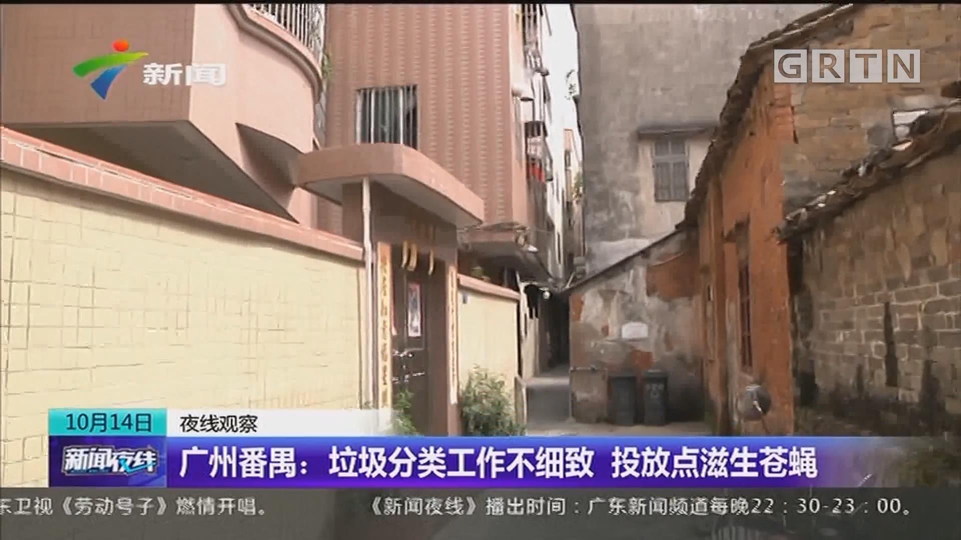 广州番禺:垃圾分类工作不细致 投放点滋生苍蝇