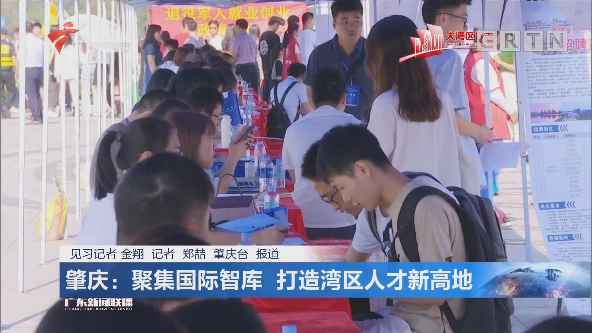 肇庆:聚集国际智库 打造湾区人才新高地