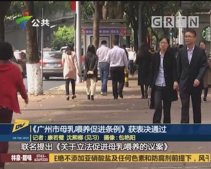 (DV现场)《广州市母乳喂养促进条例》获表决通过