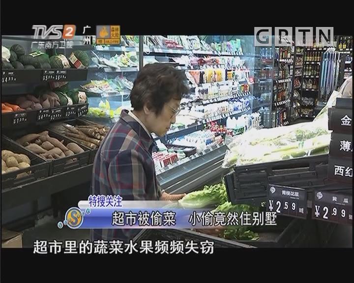 超市被偷菜 小偷竟然住别墅