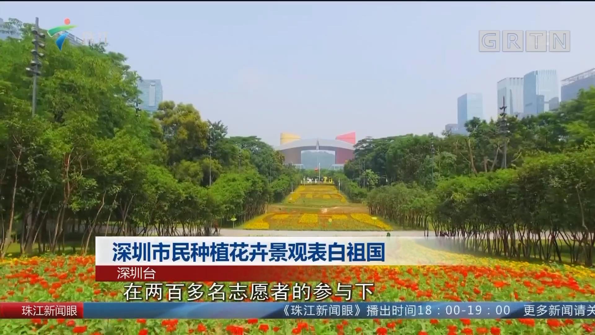 深圳市民種植花卉景觀表白祖國