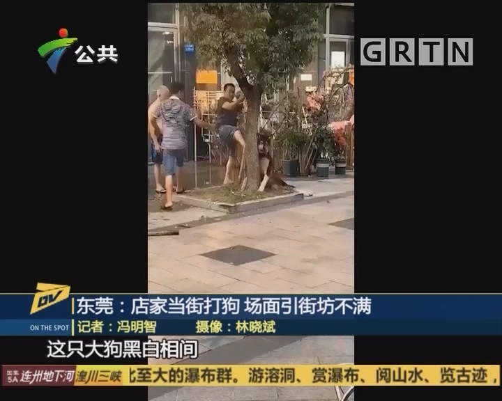 (DV现场)东莞:店家当街打狗 场面引街坊不满