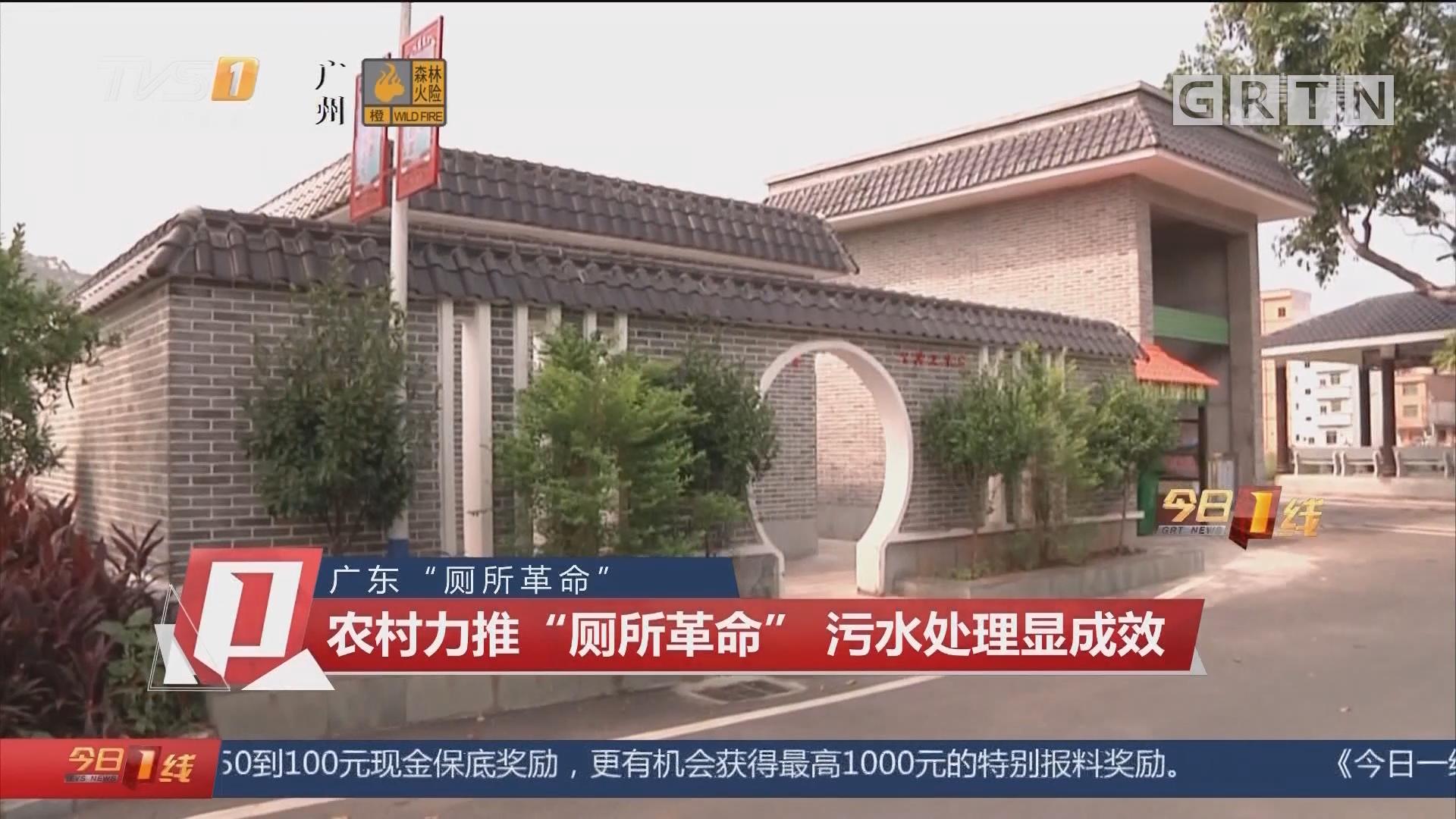 """广东""""厕所革命"""":农村力推""""厕所革命"""" 污水处理显成效"""