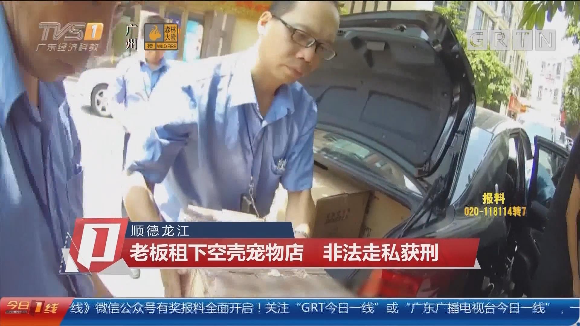 顺德龙江:老板租下空壳宠物店 非法走私获刑