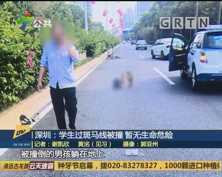(DV现场)深圳:学生过斑马线被撞 暂无生命危险