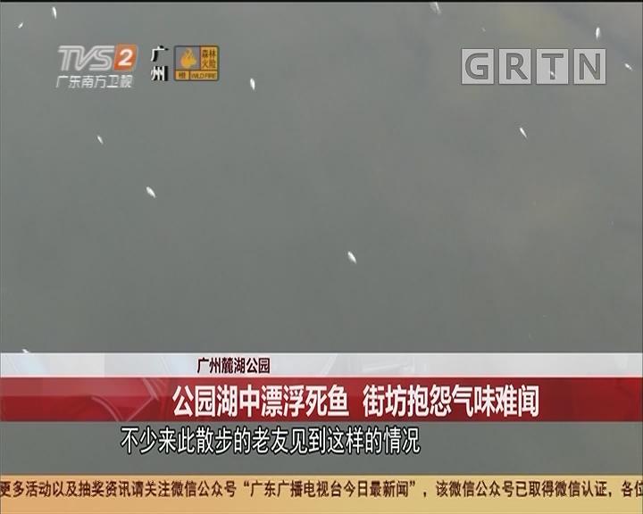 广州麓湖公园 公园湖中漂浮死鱼 街坊抱怨气味难闻