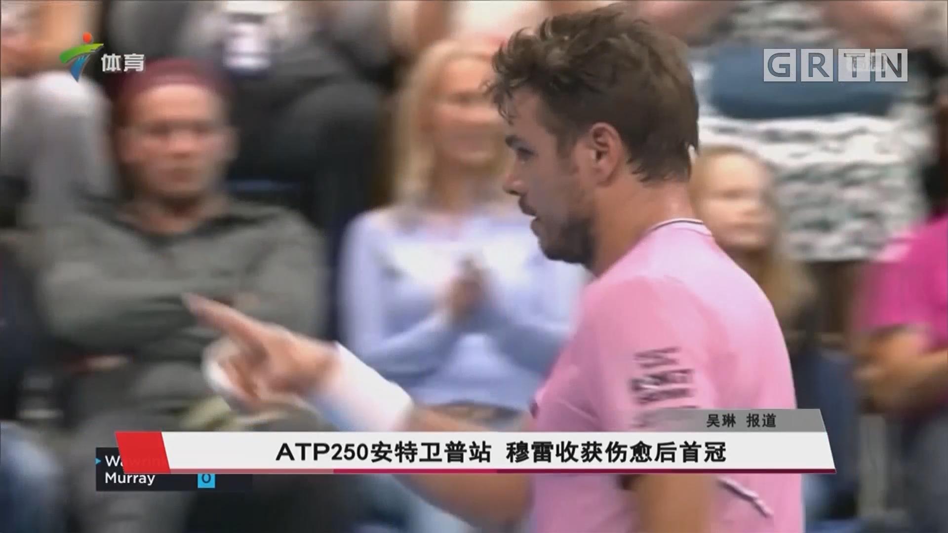 ATP250安特卫普站 穆雷收获伤愈后首冠