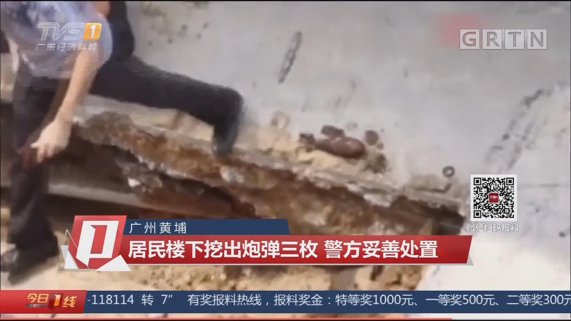 广州黄埔:居民楼下挖出炮弹三枚 警方妥善处置