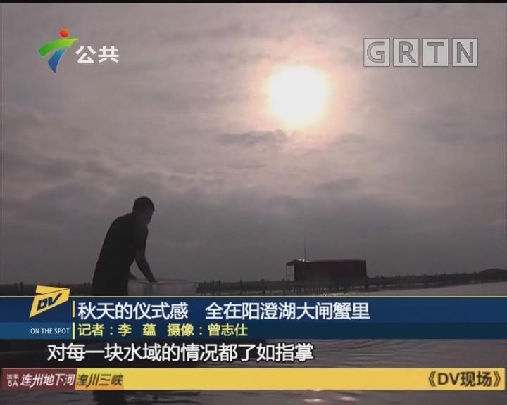 (DV现场)秋天的仪式感 全在阳澄湖大闸蟹里