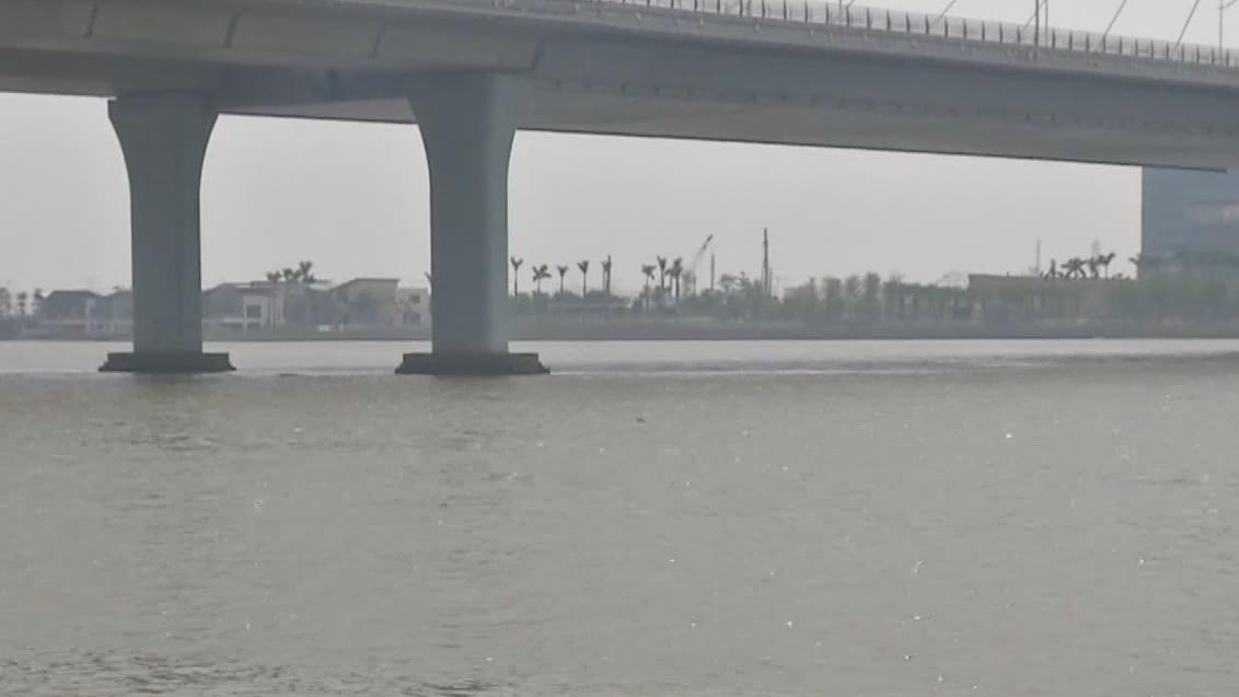 广州南沙:男子江边游泳 捞上一米四长巨鱼