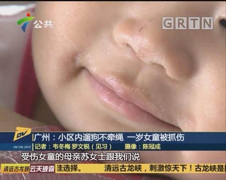 (DV现场)广州:小区内遛狗不牵绳 一岁女童被抓伤