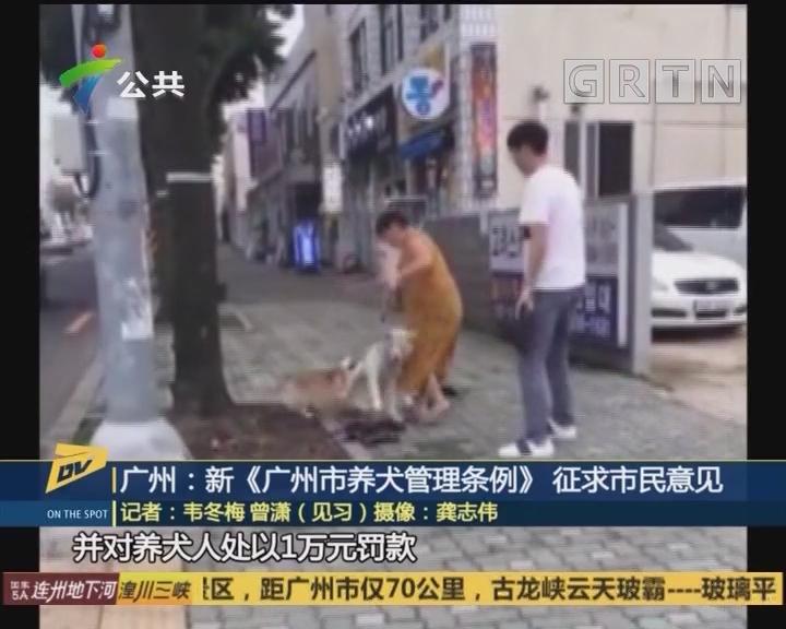 (DV现场)广州:新《广州市养犬管理条例》征求市民意见