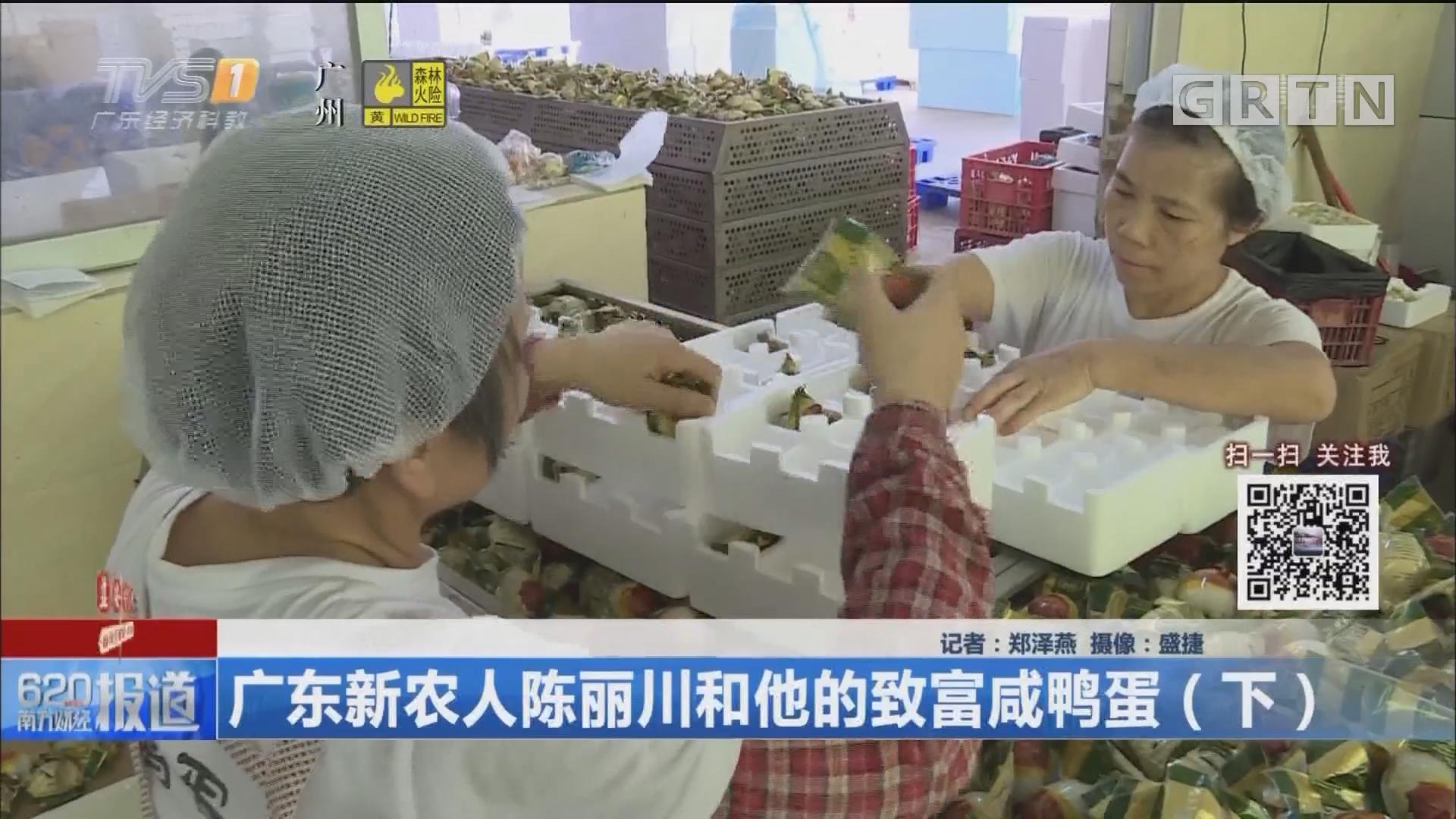 广东新农人陈丽川和他的致富咸鸭蛋(下)