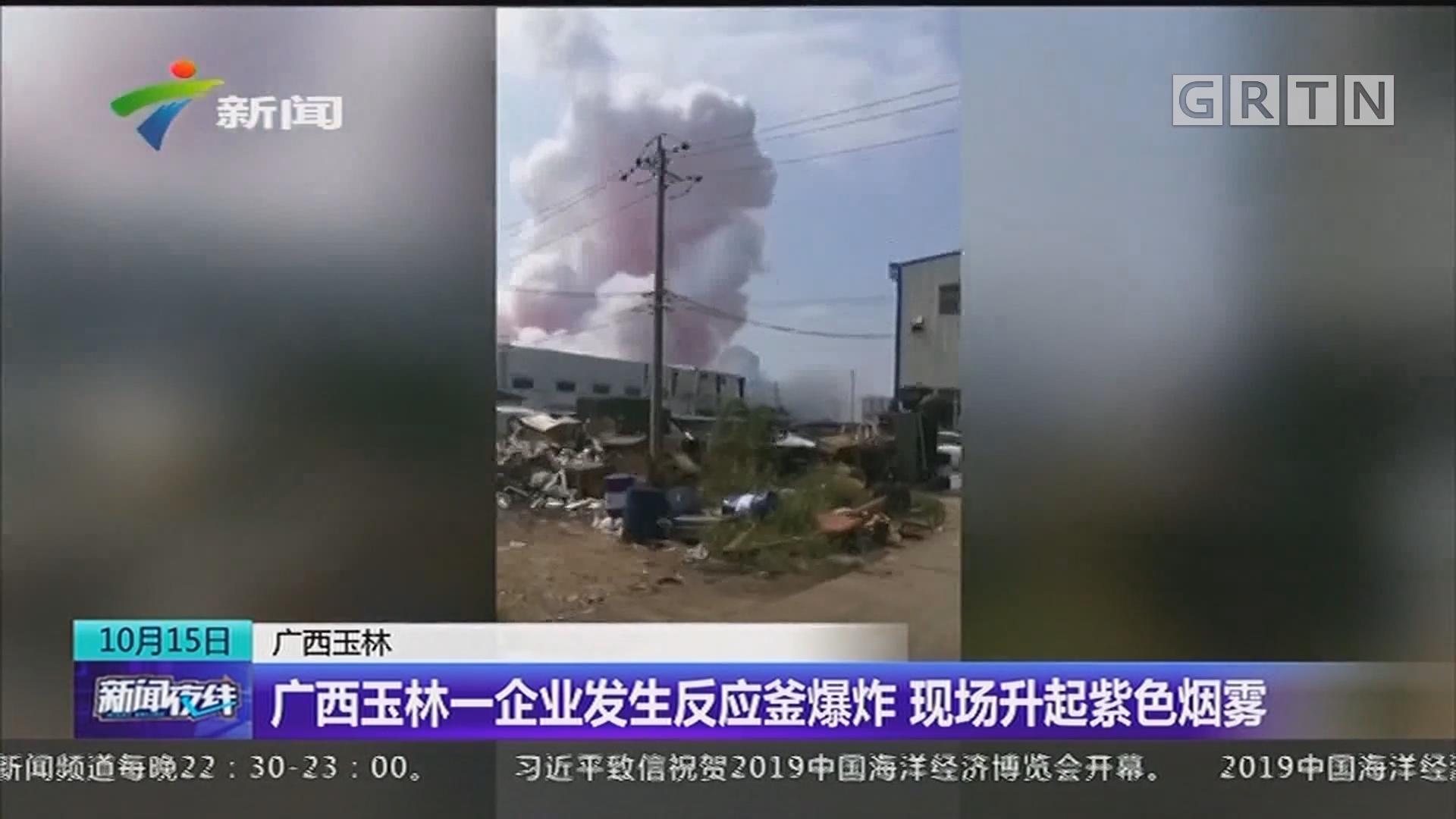 广西玉林:广西玉林一企业发生反应釜爆炸 现场升起紫色烟雾