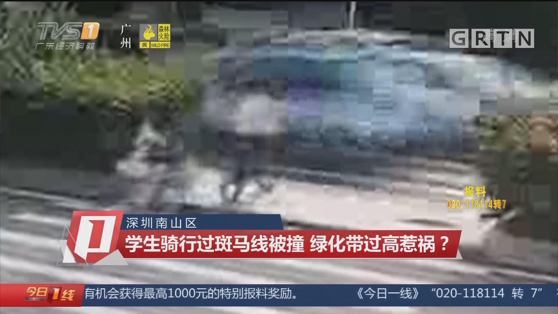深圳南山区:学生骑行过斑马线被撞 绿化带过高惹祸?