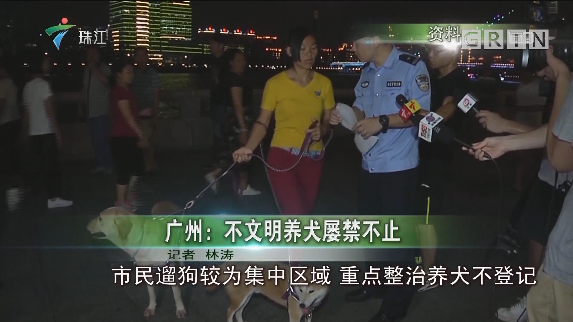 广州:不文明养犬屡禁不止