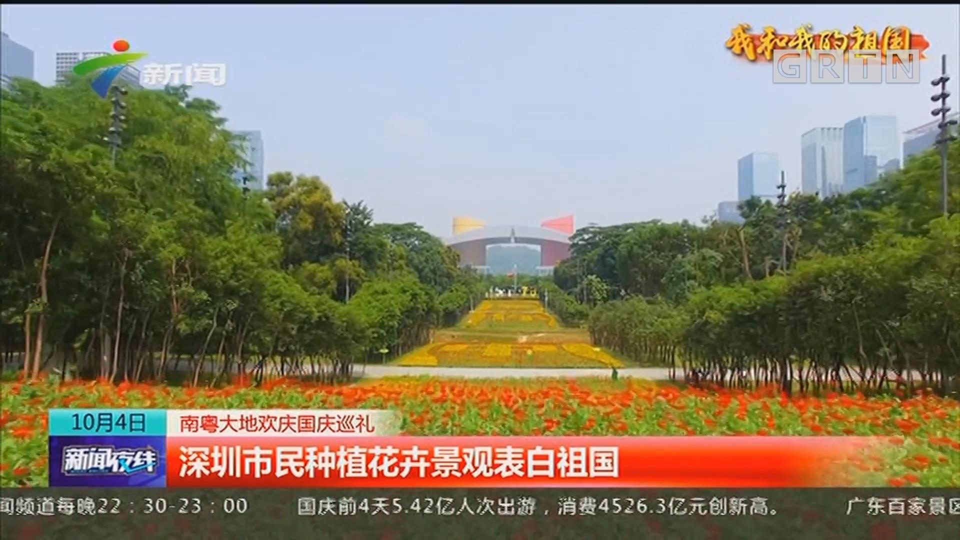南粤大地欢庆国庆巡礼:深圳市民种植花卉景观表白祖国