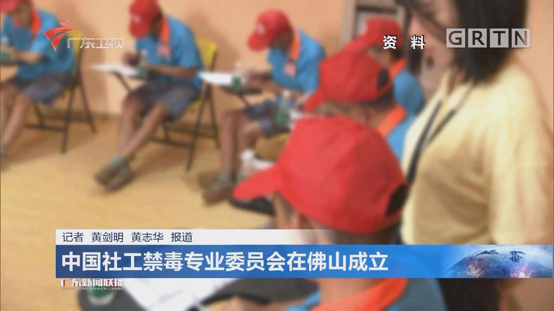 中国社工禁毒专业委员会在佛山成立