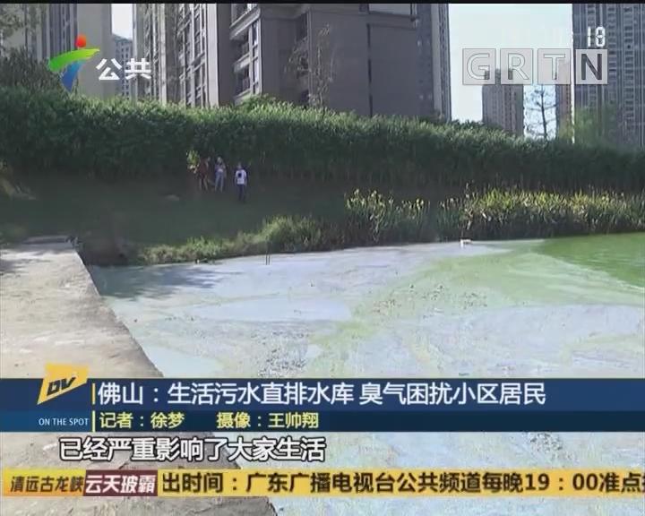 (DV現場)佛山:生活污水直排水庫 臭氣困擾小區居民