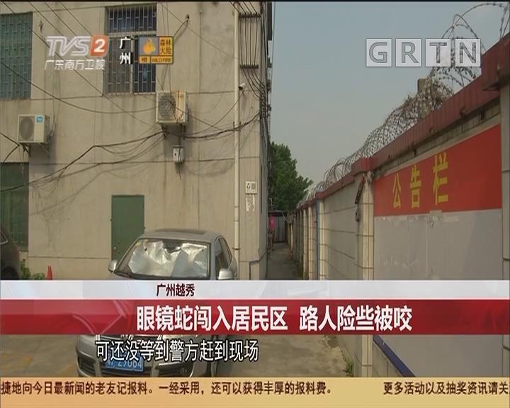 广州越秀 眼镜蛇闯入居民区 路人险些被咬