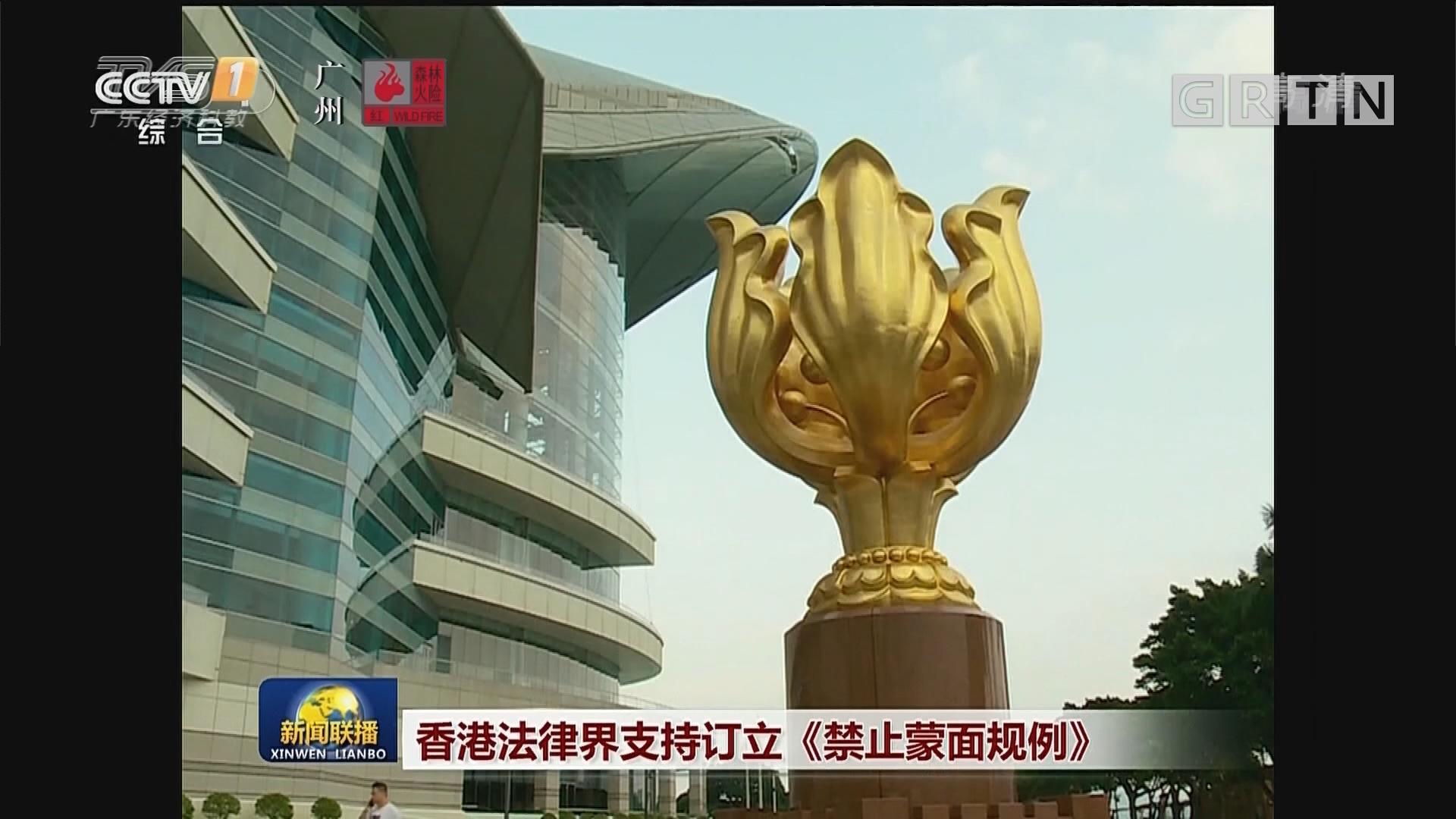 香港法律界支持订立《禁止蒙面规例》