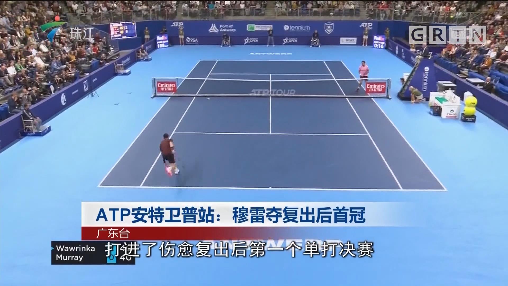 ATP安特卫普站:穆雷夺复出后首冠