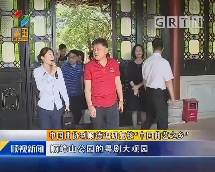 """中国曲协到顺德调研复核""""中国曲艺之乡"""""""