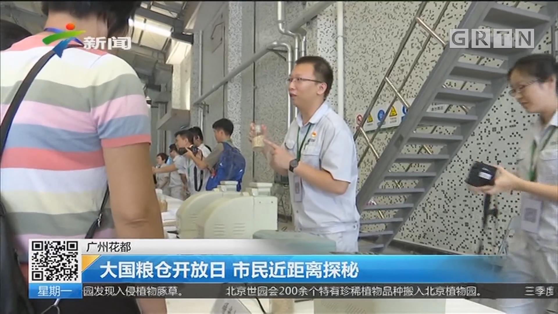广州花都:大国粮仓开放日 市民近距离探秘