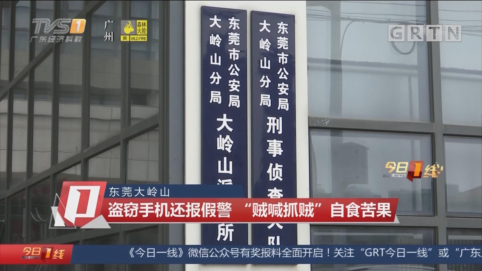"""东莞大岭山 盗窃手机还报假警 """"贼喊抓贼""""自食苦果"""