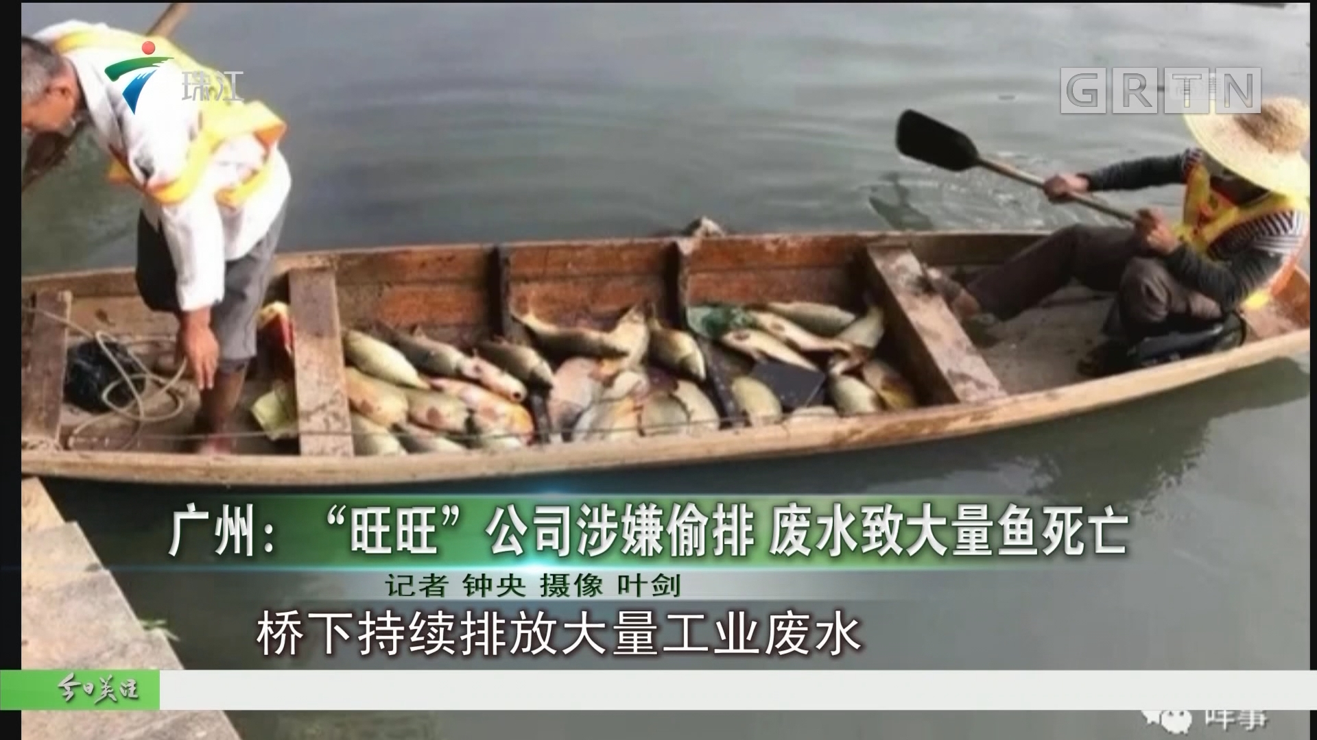 """广州:""""旺旺""""公司涉嫌偷排 废水致大量鱼死亡"""