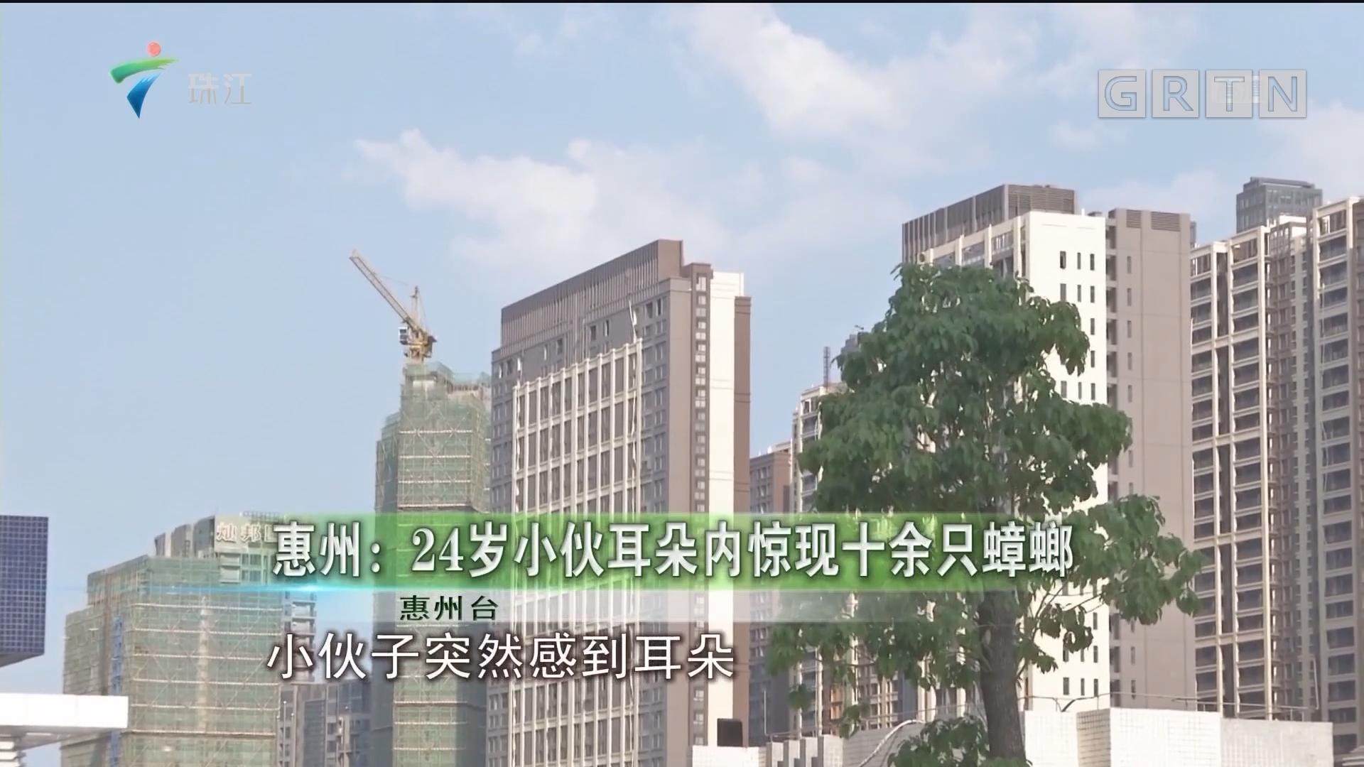 惠州:24岁小伙耳朵内惊现十余只蟑螂