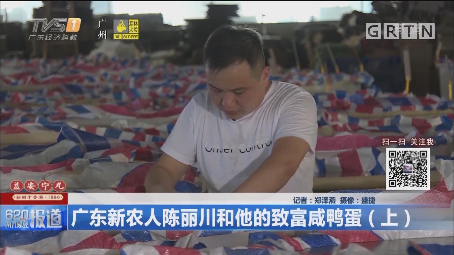 广东新农人陈丽川和他的致富咸鸭蛋(上)