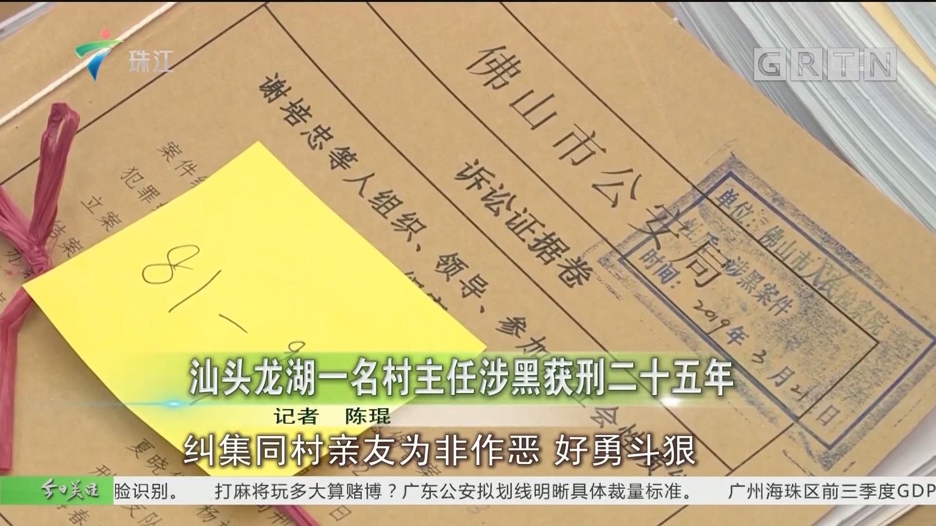 汕头龙湖一名村主任涉黑获刑二十五年